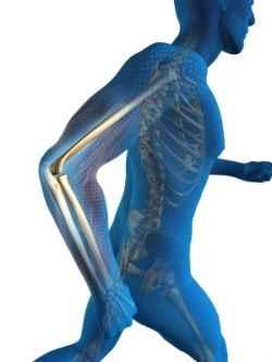 body runner