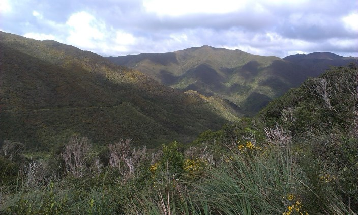 View near the exit of the Summit Tunnel on to the Wairarapa Side.